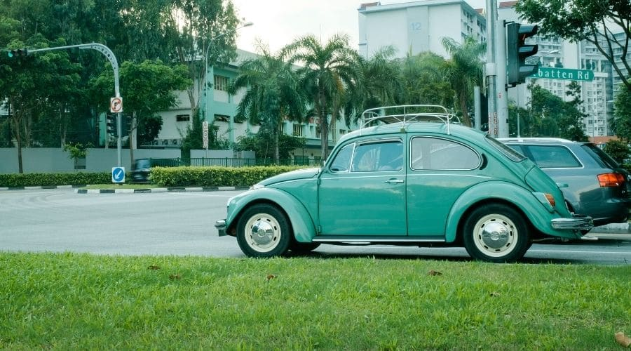 Bettle Colombia